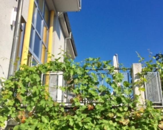 Ideale Familienvilla in TOP Lage und Grundriss mit geschützter Gartenoase